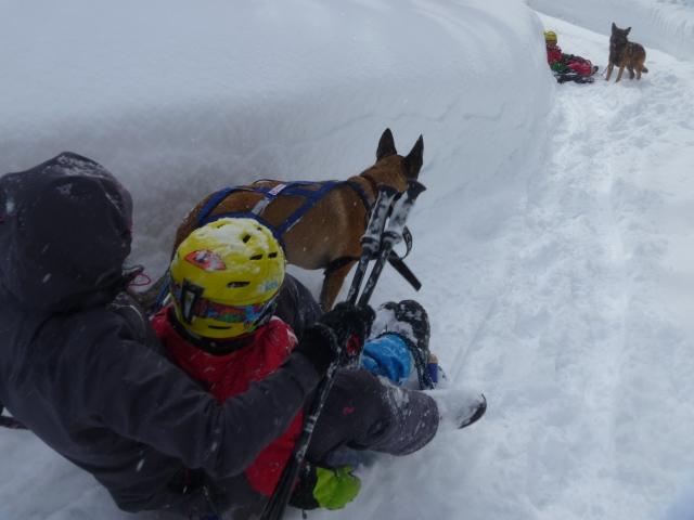 Adelboden sledding