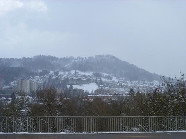 Bernese hills