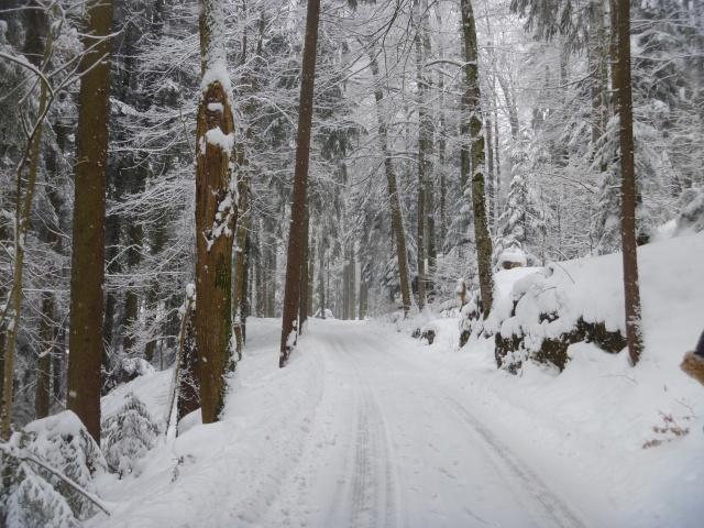 Track to Bürgenstock
