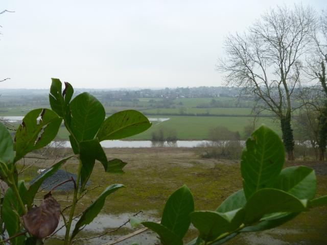 River Avon and Eckington