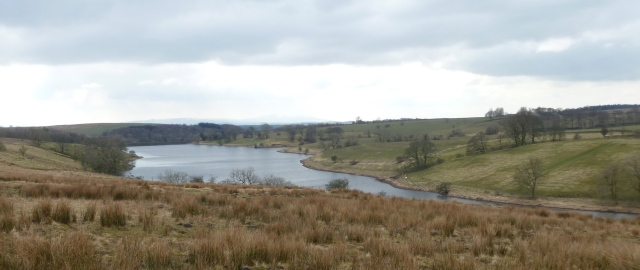 Winterburn res.