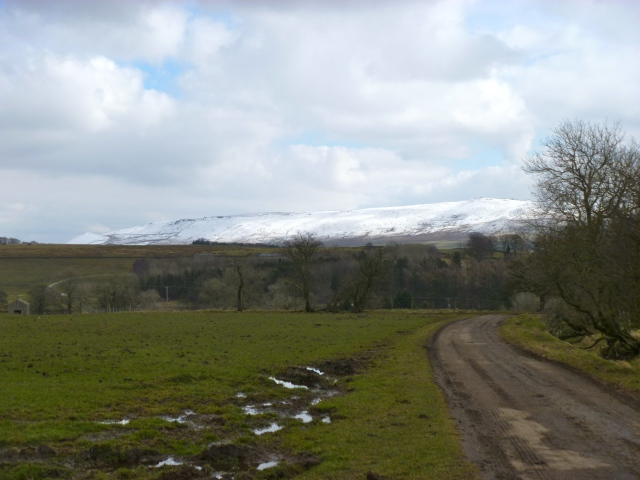 Winterburn walk