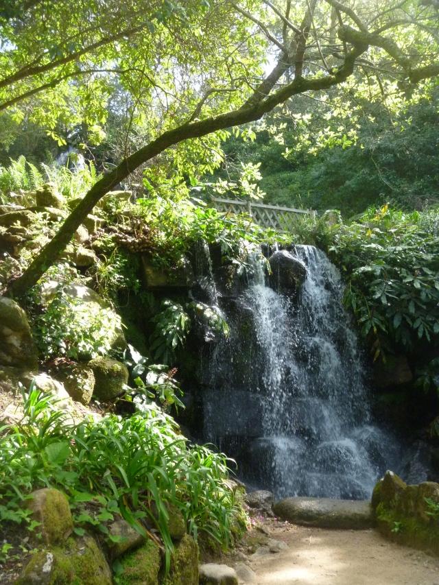 Beckford's Falls