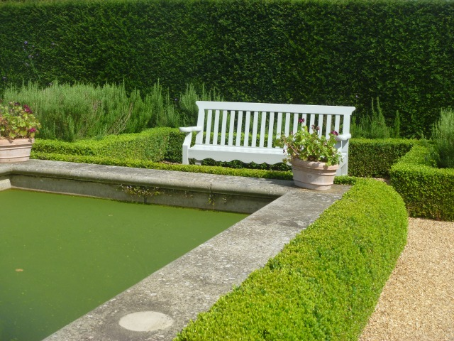 Corner of pool with hedging