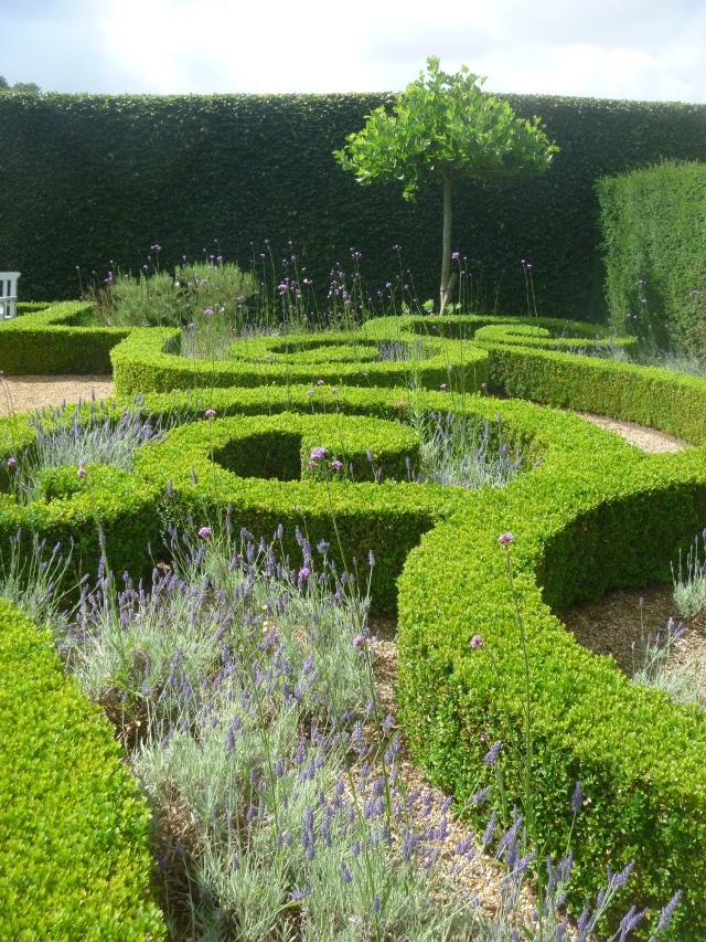 Lavender knot garden