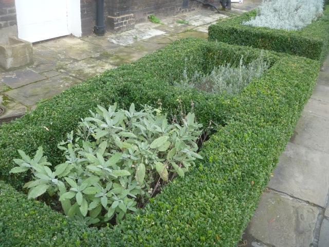 Lincolns Inn herbs