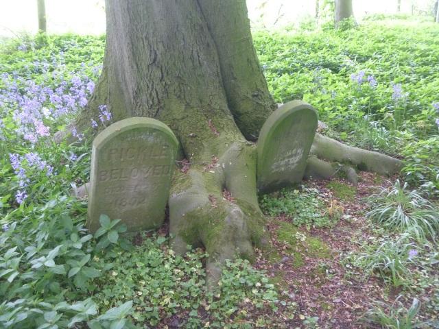 Dog Graves
