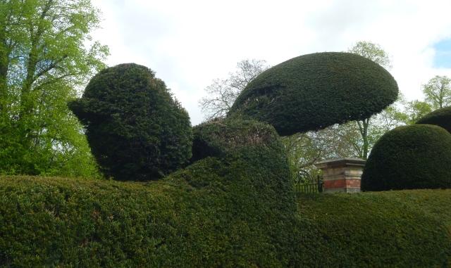 Kiplin topiary