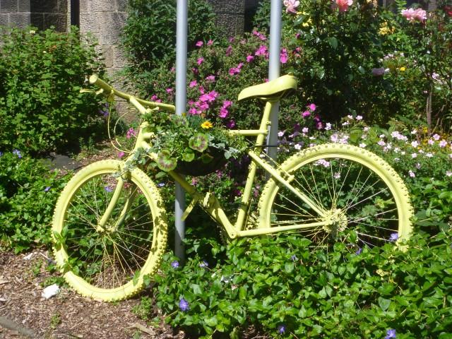Yellow bike Pool