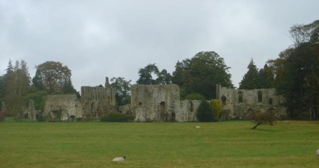 Jervaulx ruins