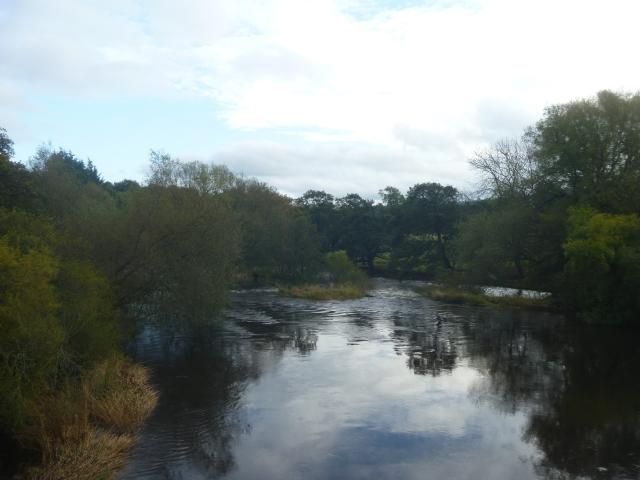 River Ure near Cover Bridge
