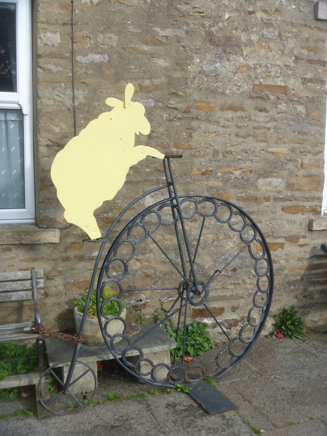 Sheep on penny farthing