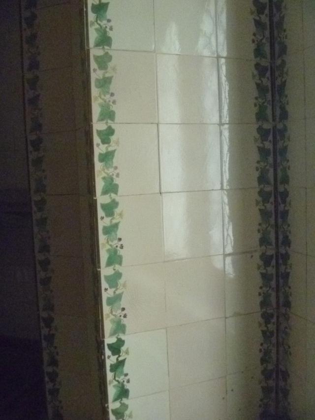 Ivy tiles