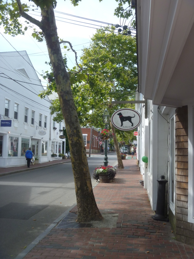 Main St Edgartown