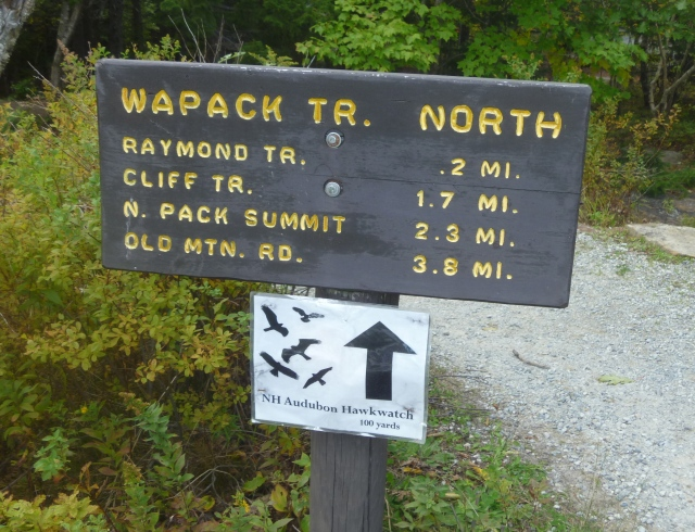 Trail to hawk watch