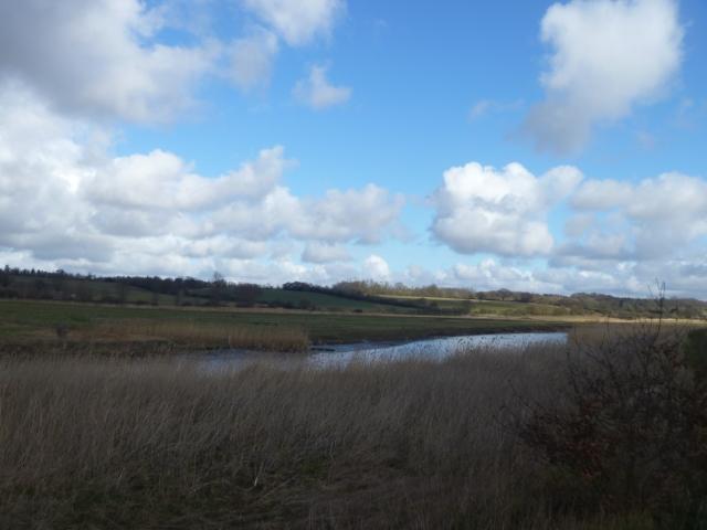 River Stour 1