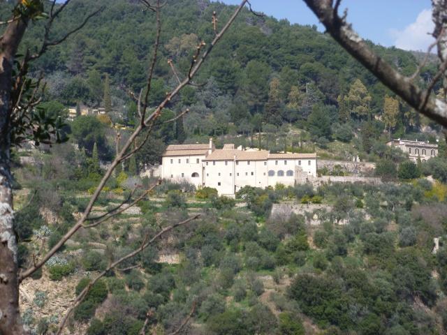SA view