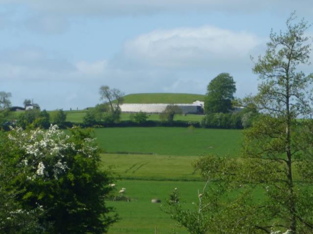 Newgrange from road
