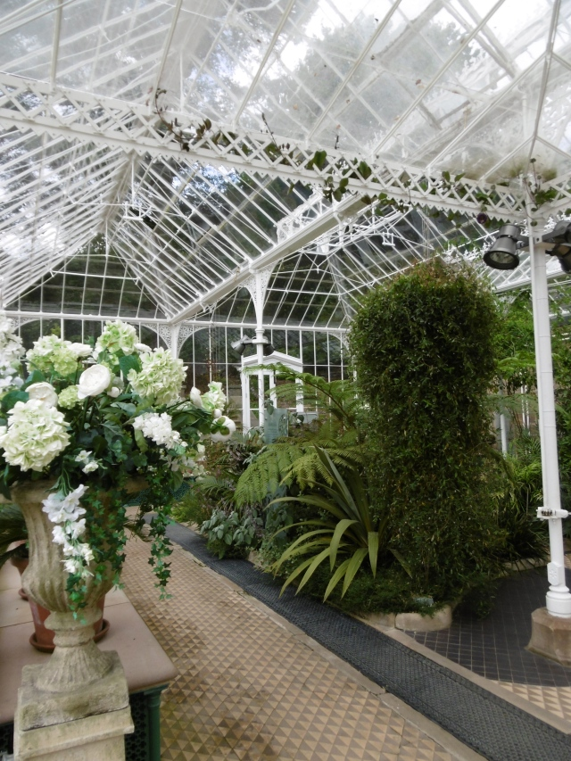 Glasshouse interior
