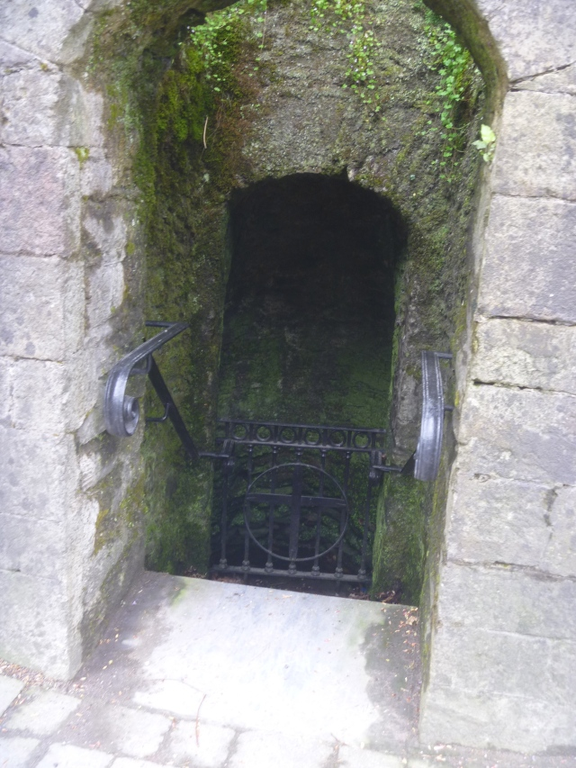 St Carthage well