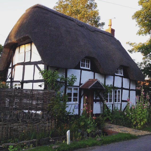 Thatched beauty