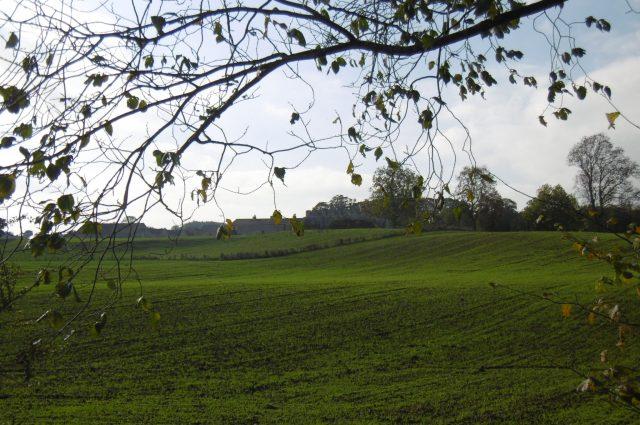 Markenfield