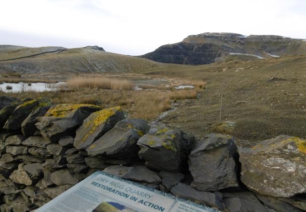 quarry 1