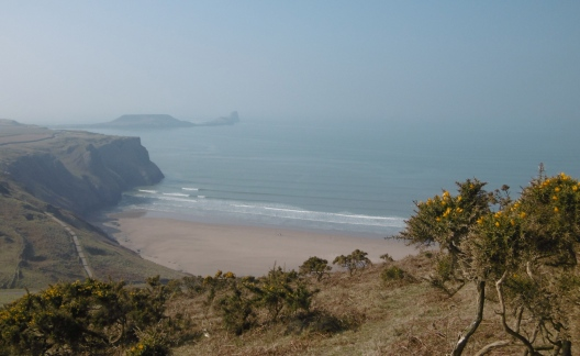 hazy worms head