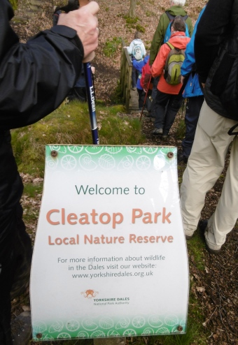 entering cleatop