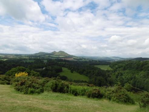 Scot's View