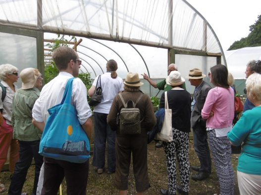 Inspecting a Poly Tunnel