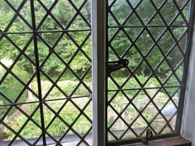 garden-from-upstairs