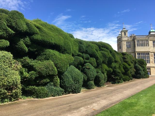 cloud hedge 2