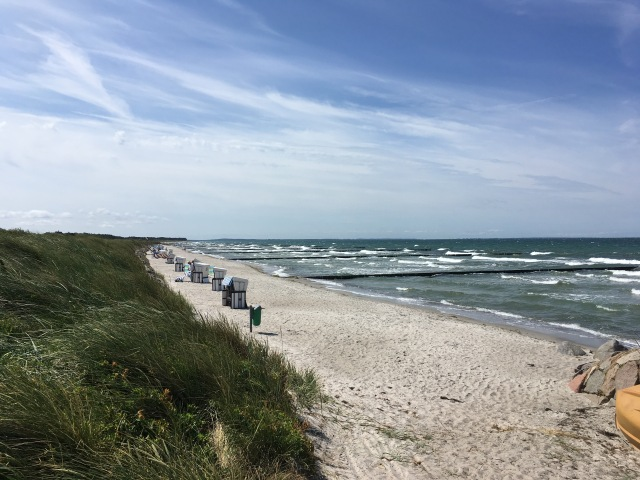 beach looking south
